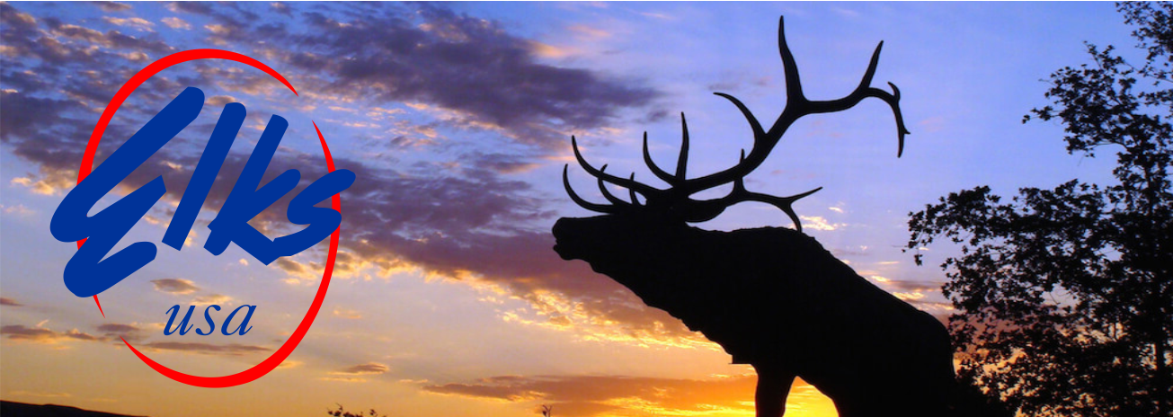 Michigan Elks Charitable Grant Fund